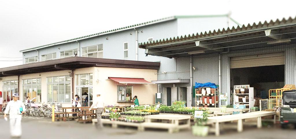 JAさがみ 海老名グリーンセンター