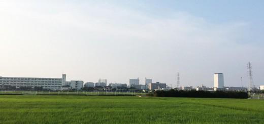 中新田 田園風景