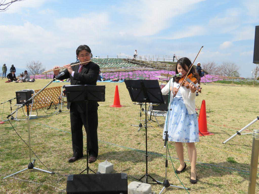 県立相模三川公園 桜ライブコンサート