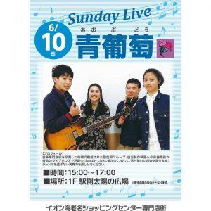 Sunday Live「青葡萄(あおぶどう)」