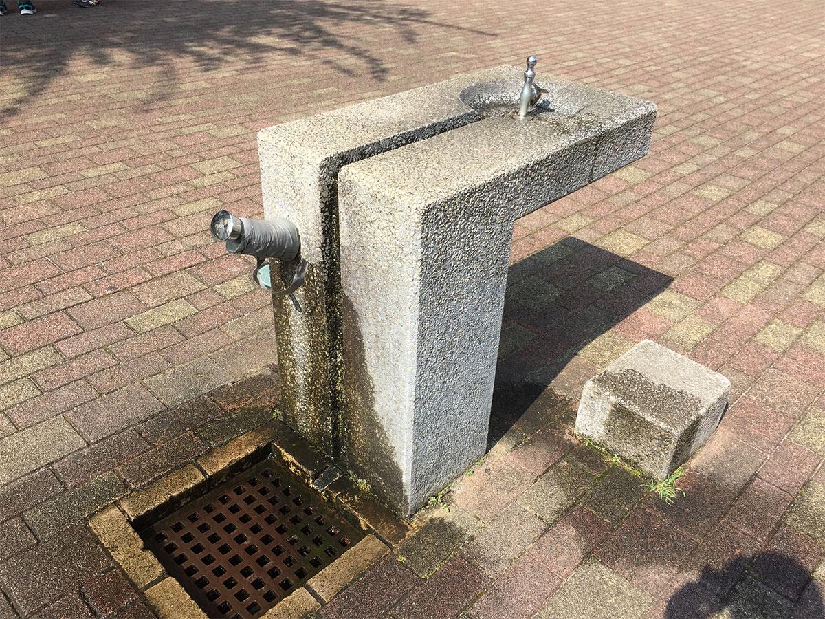 海老名中央公園内に2カ所の水道