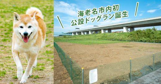市内初!無料で利用できる公設「ドッグラン」がオープン!相模川河川敷の中野多目的広場に