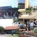 JAさがみ 海老名グリーンセンター/ビナウォーク/海老名市文化会館/一日だけ鉄道博物館