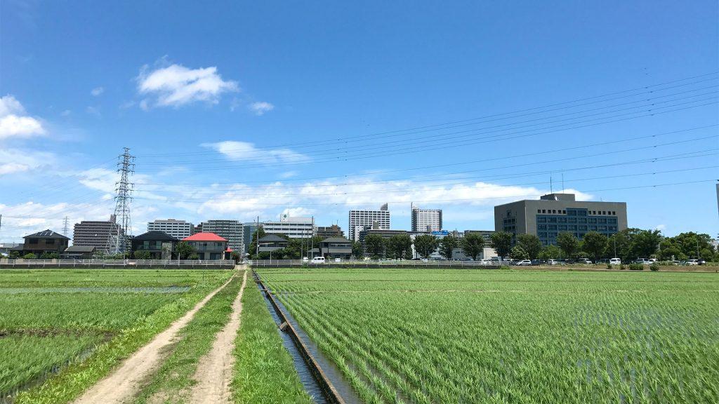 田んぼと駅前の街並み