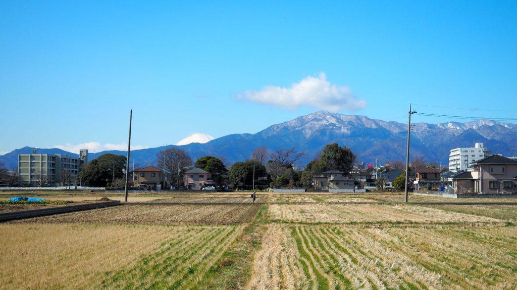 田んぼと大山と富士山